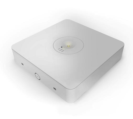 Ektor Ledfire Pro Emergency Luminaire SM D63 » Globelink